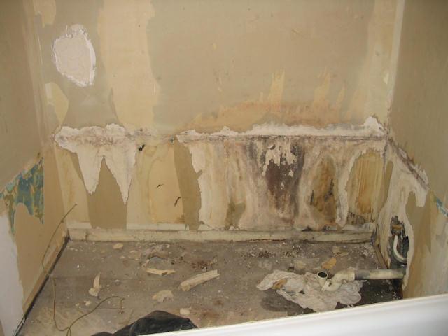 Cloison salle de bain pourrie - Monter une cloison dans une salle de bain ...