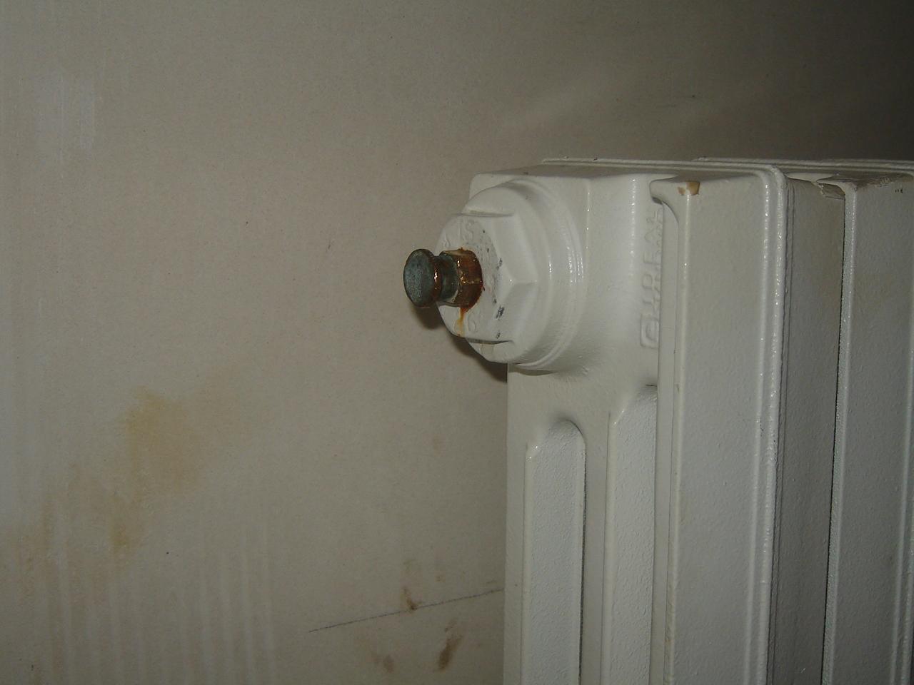 Vis de purge cass e sur radiateur fonte - Pied pour radiateur en fonte ...