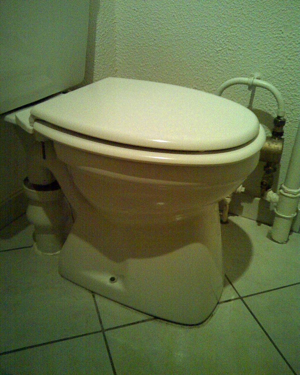 Quels produits d 39 entretien pour wc vacuation verticale for Produit pour deboucher les wc