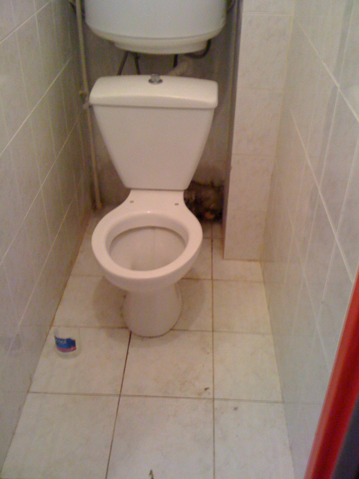Comment cacher tuyaux toilettes for Comment cacher des tuyaux apparents