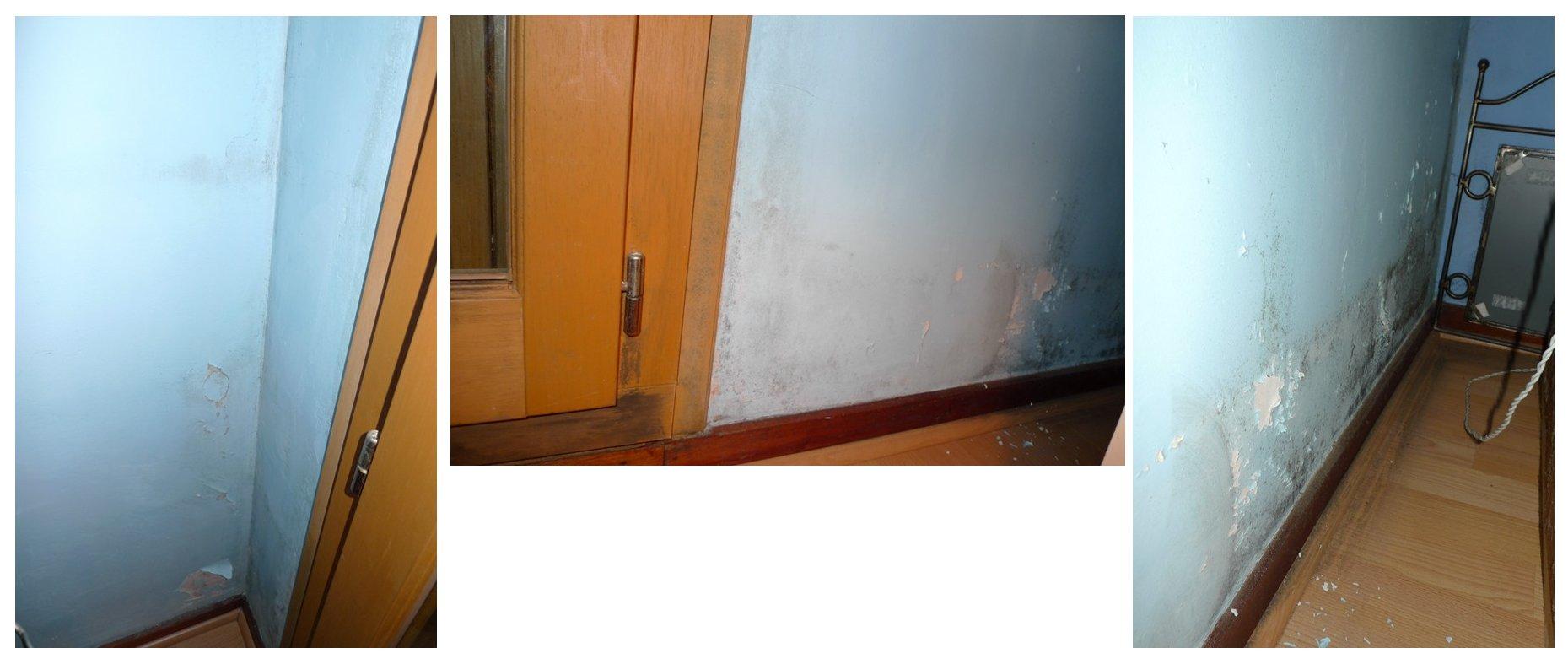 lutte contre l 39 humidit les moisissures et autres champignons. Black Bedroom Furniture Sets. Home Design Ideas