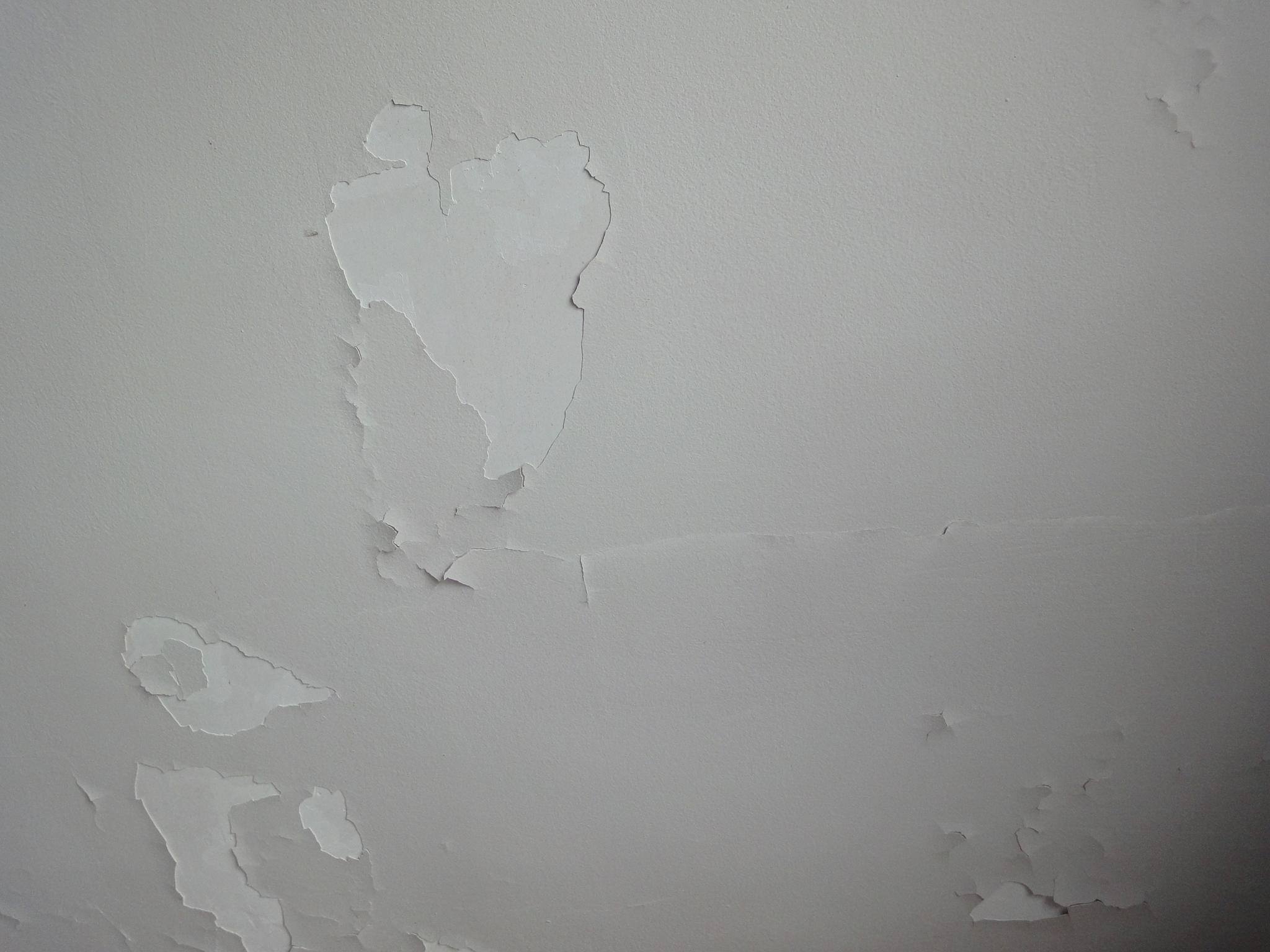 Peinture du plafond qui se d colle et tombe for Platre plafond salle de bain