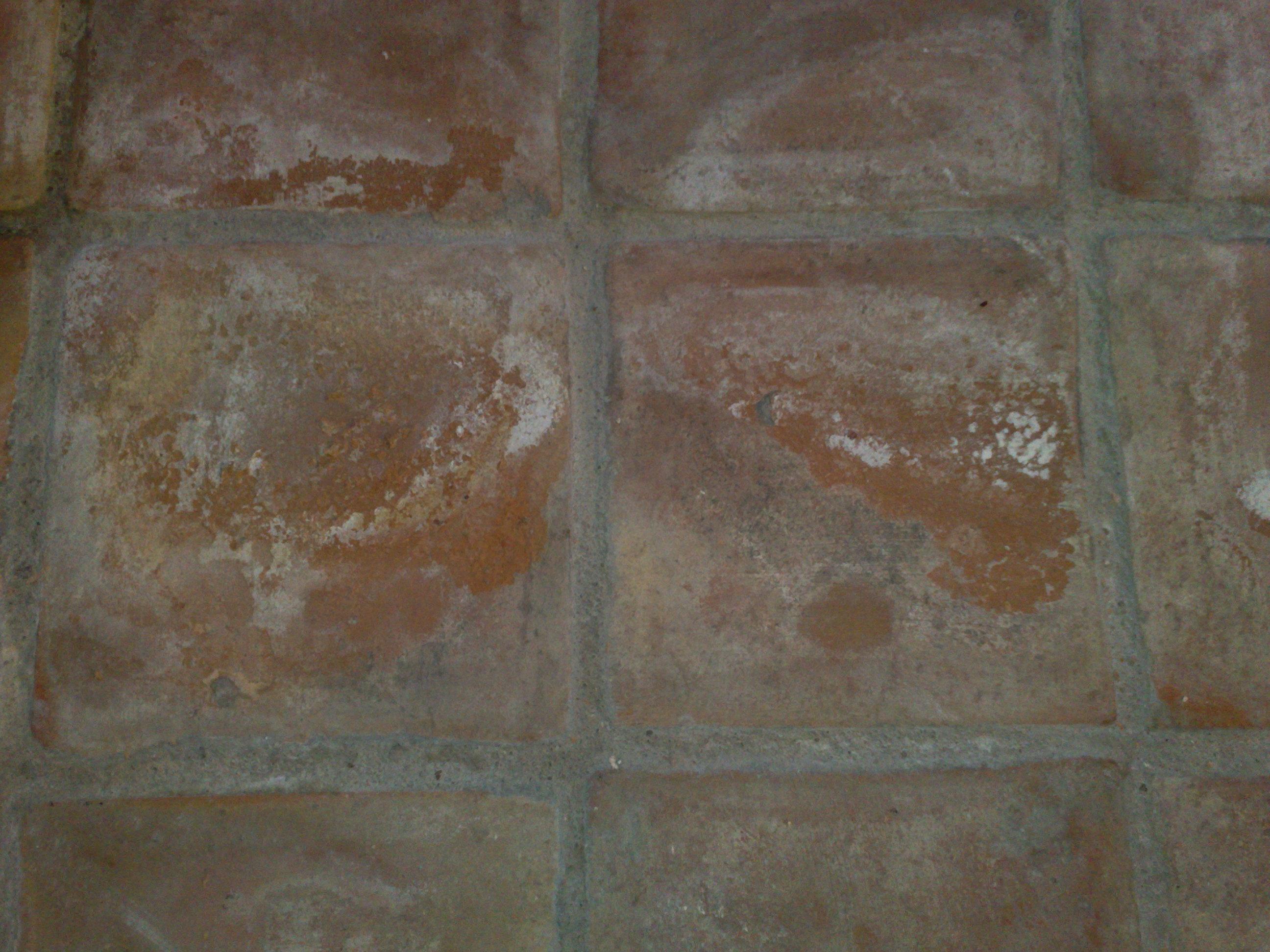 Humidite Qui Remonte Par Le Carrelage remontées humides par le sol
