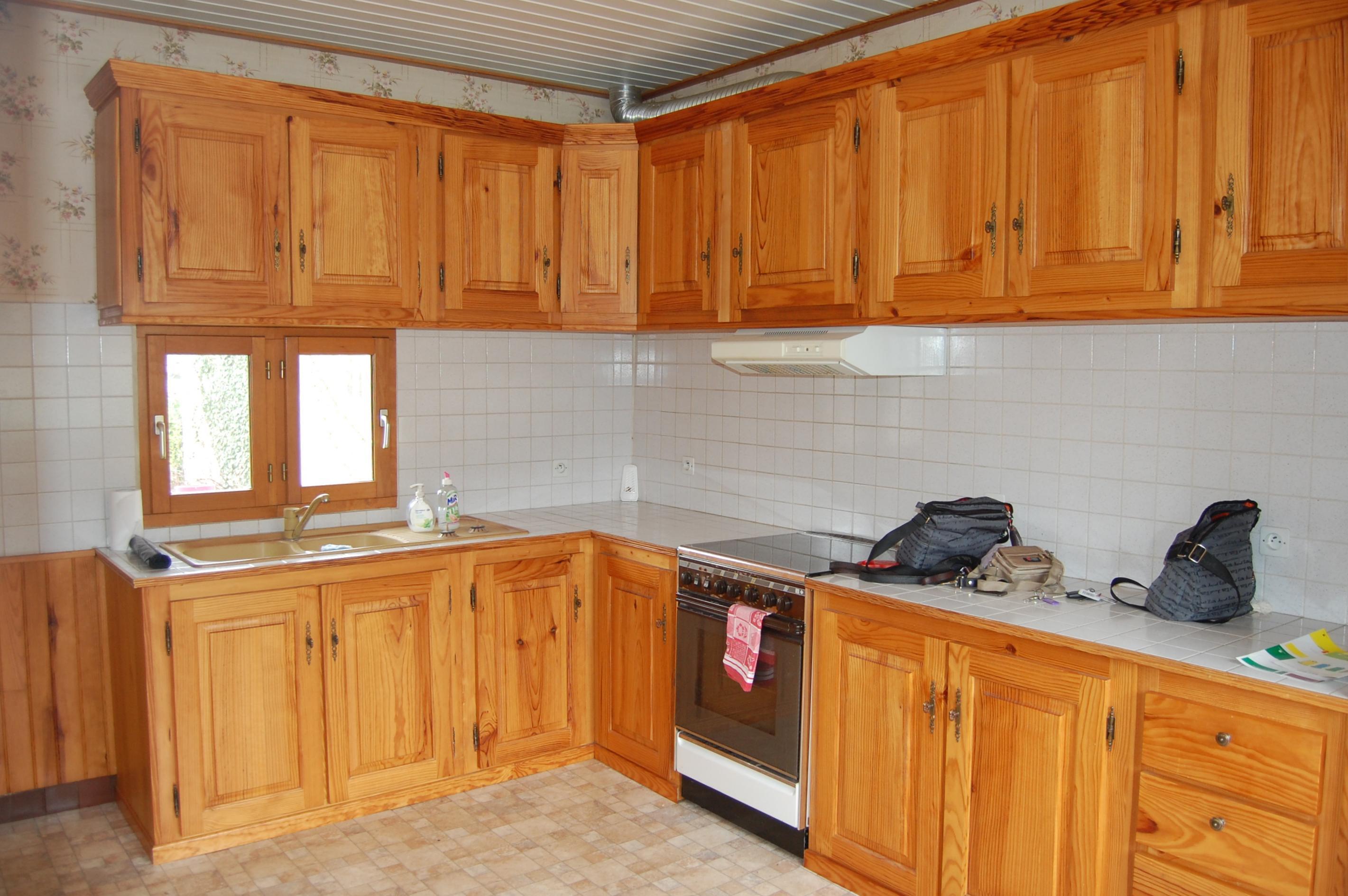 Changer couleur meuble de cuisine for Peinture meuble bois cuisine