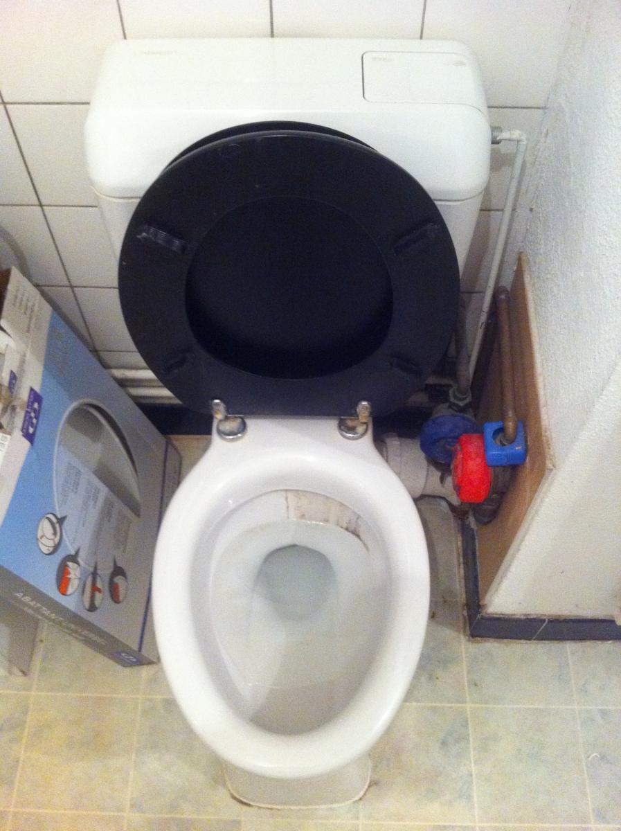 changement toilettes. Black Bedroom Furniture Sets. Home Design Ideas