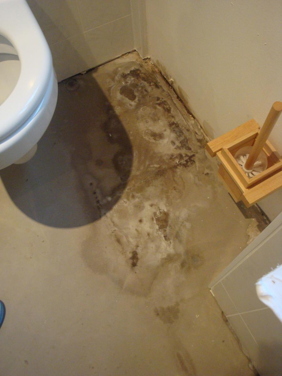 D g t des eaux - Degat des eaux salle de bain ...