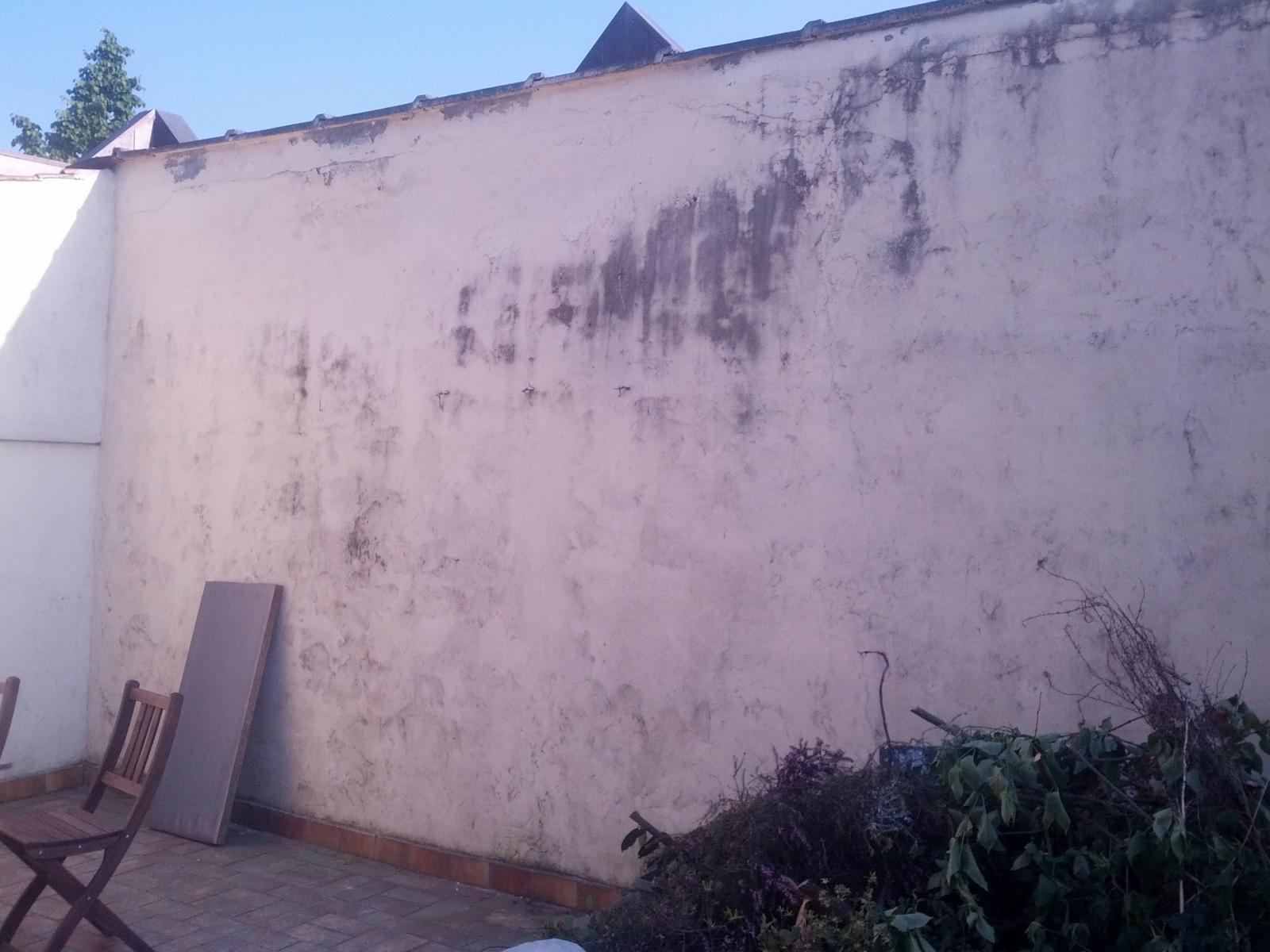Raffraichir Mur Exterieur Cour Photo