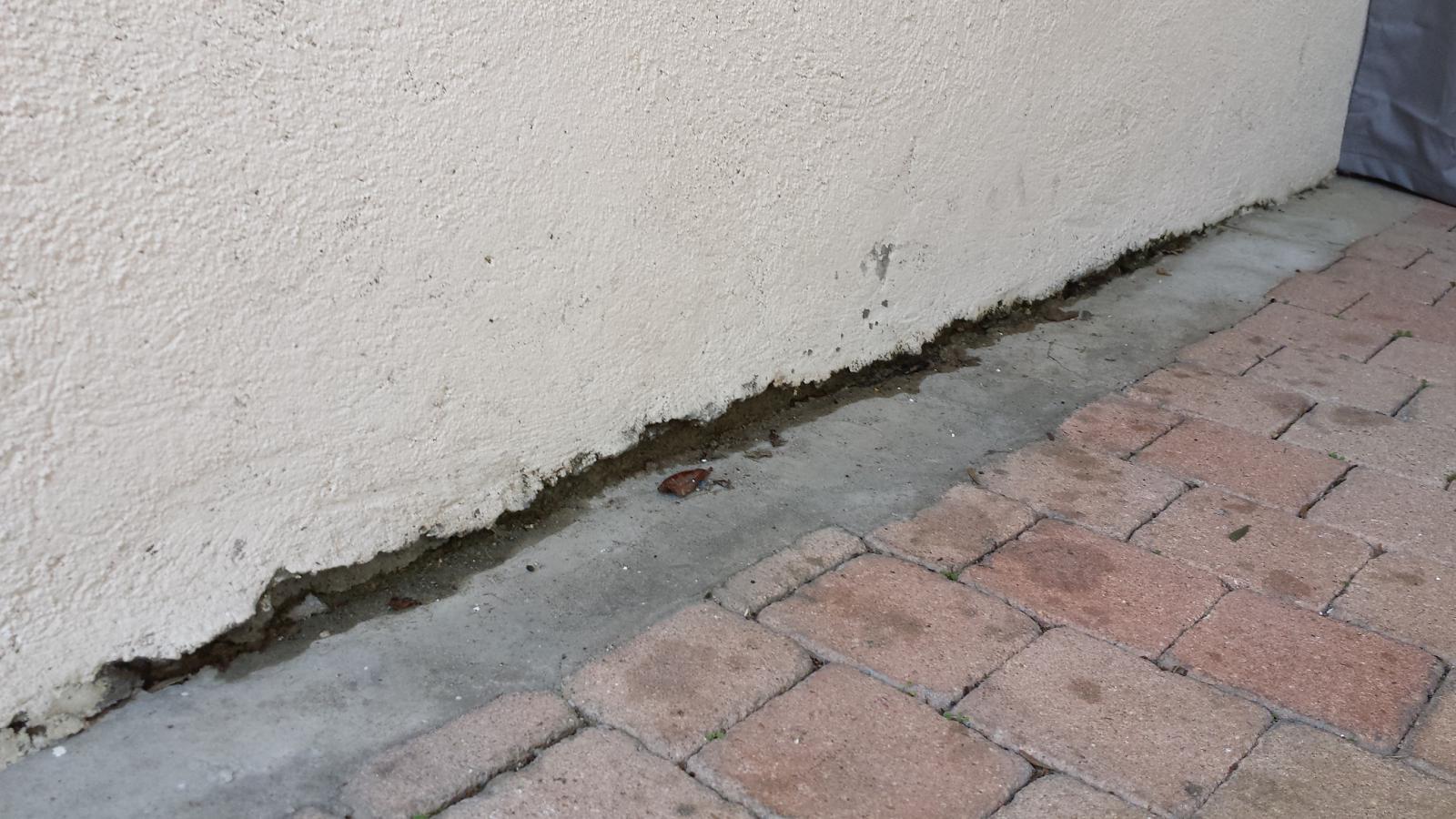 Proteger Le Bas Des Murs Exterieurs : mur ext rieur mitoyen et infiltration eau ~ Dode.kayakingforconservation.com Idées de Décoration