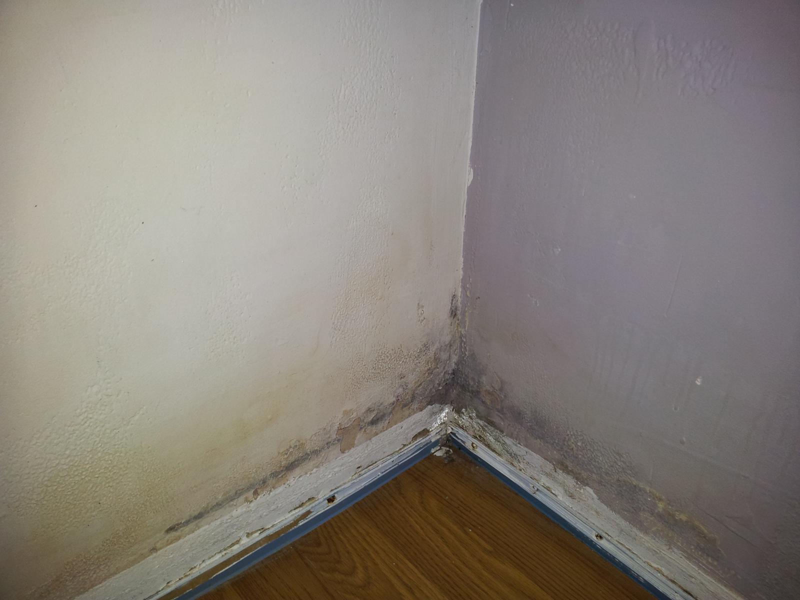 Probème humidité mur chambre