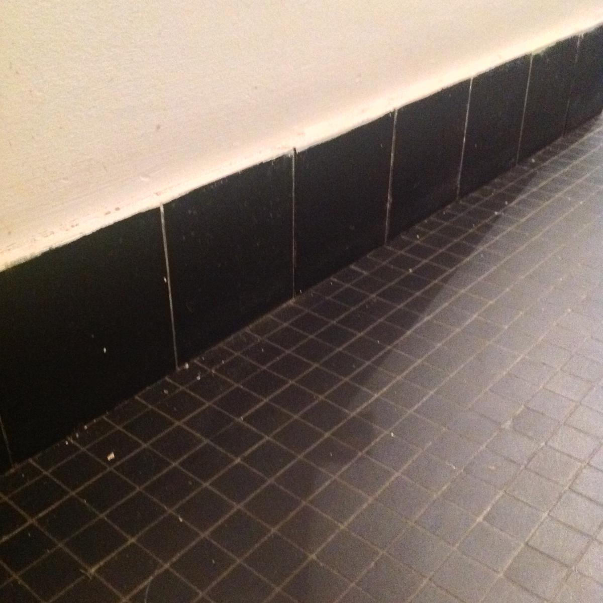 Repeindre le carrelage de sol d 39 une sdb wc for Carrelage sol sdb