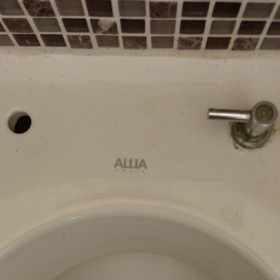 Wc Allia Et Demontage Abattant