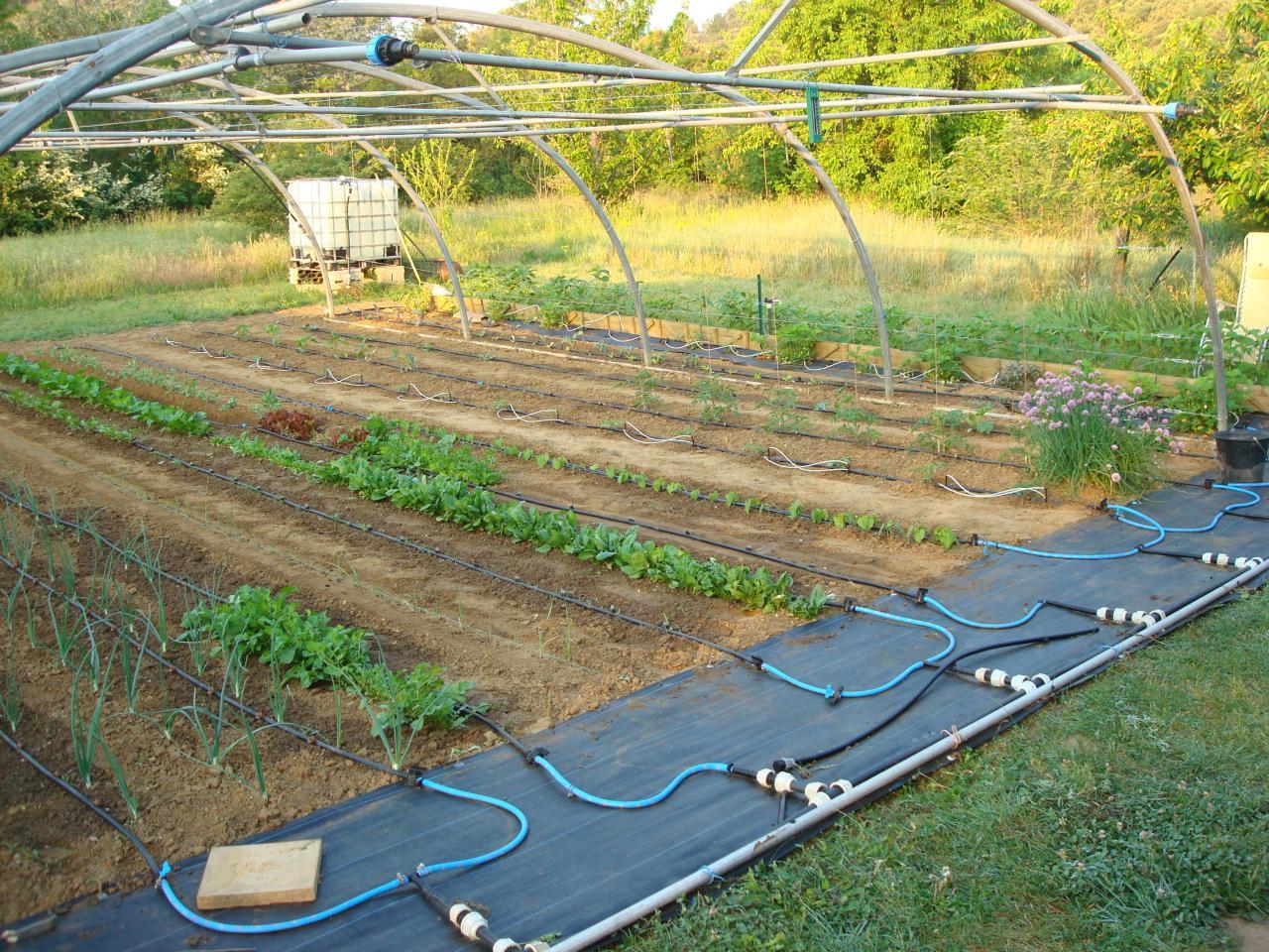 Mod le d 39 intallation d 39 arrosage for Arrosage du jardin