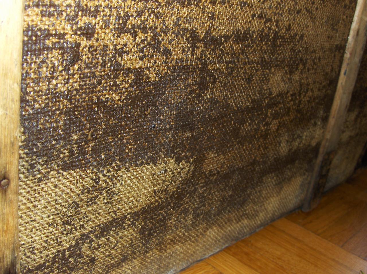 R novation d 39 une ancienne malle en bois - Comment nettoyer des champignons des bois ...