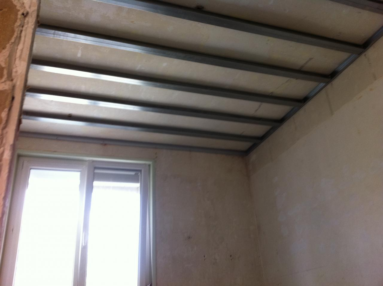 Types de rails et montants pour plafond autoporteur placo for Faire un plafond en ba13