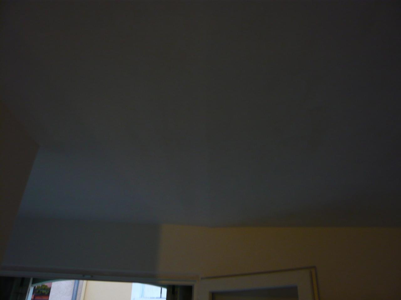 Faux Plafond Salle De Bain Pvc
