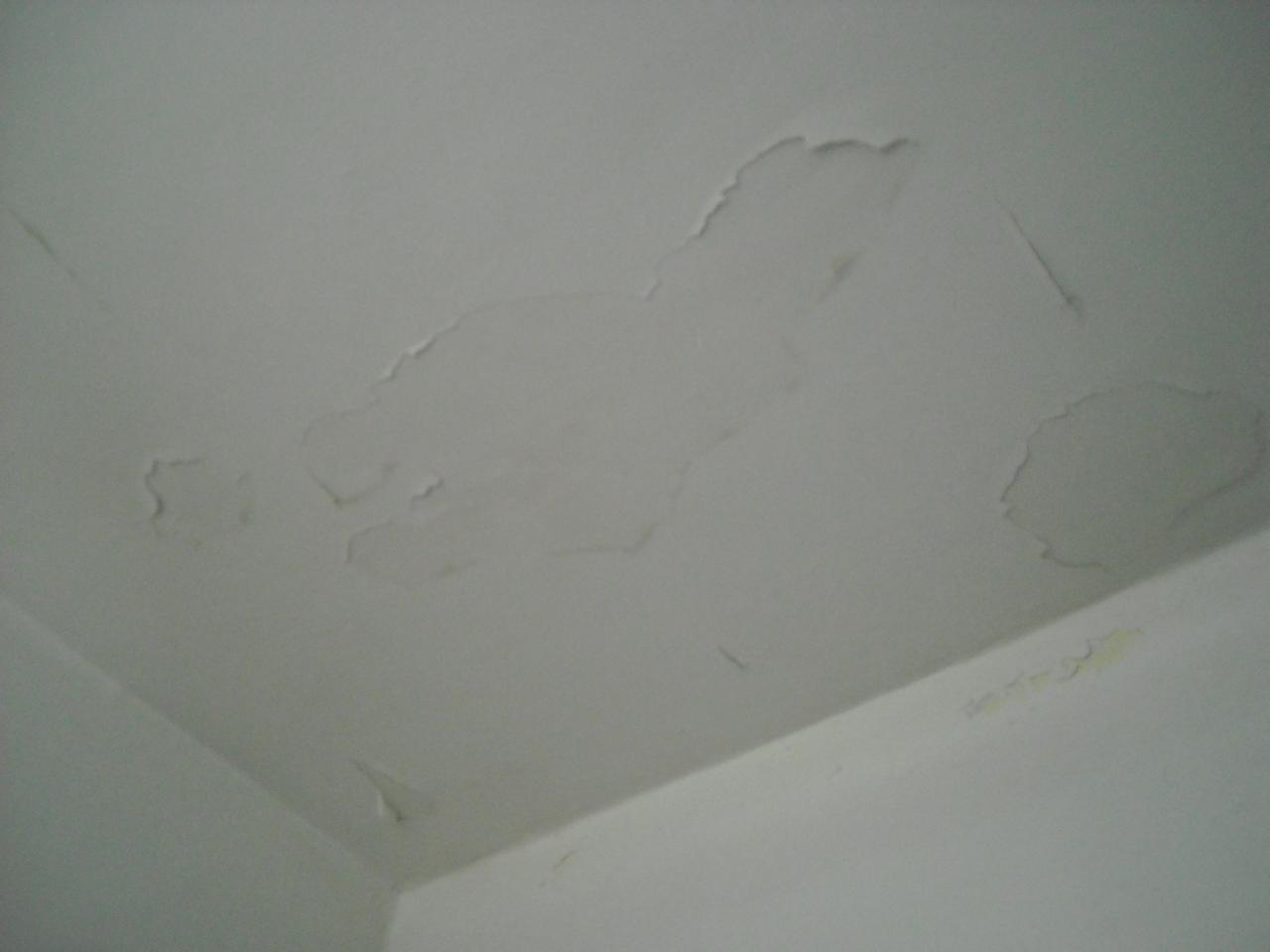 Peinture qui s 39 fritte sur mur et plafond - Retouche peinture mur ...